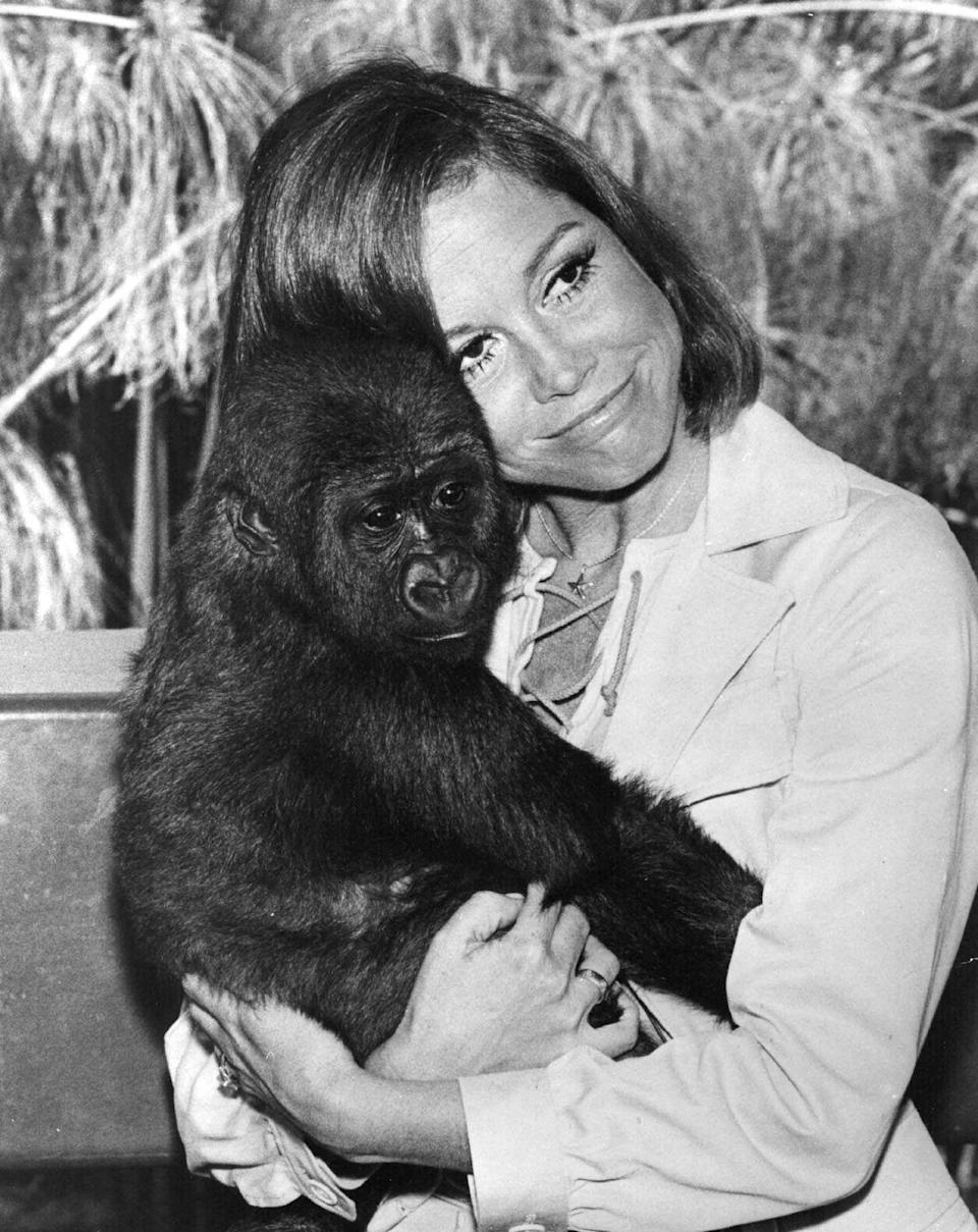 <p>Moore cuddles a gorilla at the Los Angeles Zoo.</p>