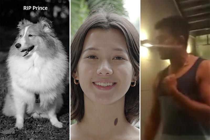 (PHOTOS of Prince the Shetland sheepdog, NUS undergraduate Monica Baey and condominium resident Erramalli Ramesh: Courtesy of Elaine Mao / WomenTalk / YouTube screengrab)