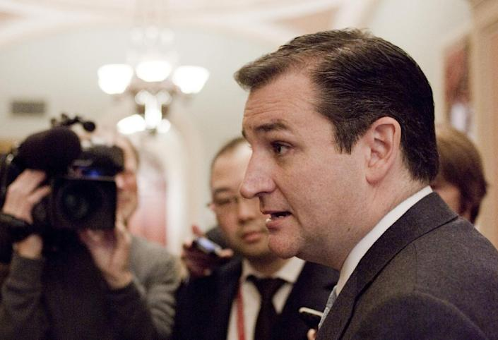 FILE - This Nov. 13, 2012 file photo shows Sen.-elect Ted Cruz, R-Texas speaking to reporters on Capitol Hill in Washington. When the next Congress cranks up in January, there will be more women, many new faces and 11 fewer of the tea party-backed 2010 House GOP freshmen who sought re-election. Overriding those changes, though, is a thinning of pragmatic, centrist veterans in both parties. Among those leaving are some of the Senate's most pragmatic lawmakers in both parties, nearly half the House's centrist Blue Dog Democrats and several moderate House Republicans. (AP Photo/Harry Hamburg, File)