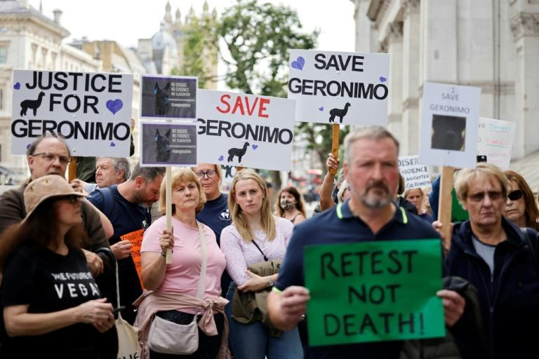 Dozens of protesters marched on Downing Street this month, calling for the government to spare Geronimo