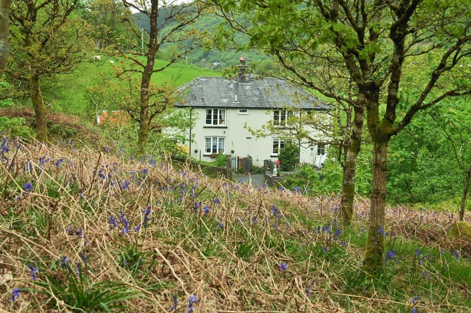 The properties and land up for sale make up the whole of the village  Photo: Dafydd Hardy