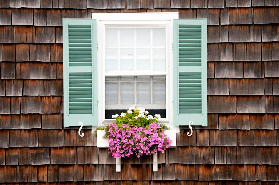 <p>You don't even need a yard to wake up to a view of blooming flowers every morning. Flowering annuals like geraniums, marigolds, wax begonias, coleus, scarlet sage, and flowering tobacco are all good choices.</p>