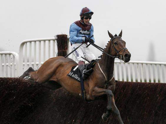 Ballyoptic is our pick for the National (Getty Images)