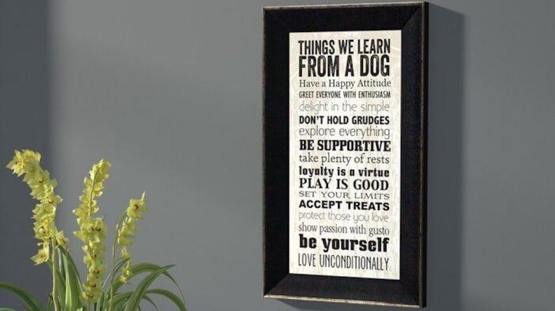 Here are all the lessons we can learn from our four-legged friends.
