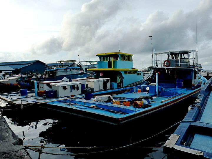 Square-shaped wooden cargo boats known as Vedis (in Dhivehi) are docked in the waterfront beside the market. Smaller vessels known as dhonis, both sail-powered and motor-powered, are more common around islands. Vedis are used for transport on the open ocean.