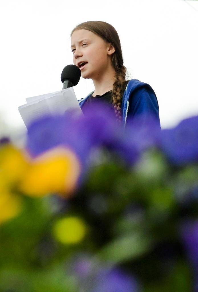 16-year-old Greta Thunberg has become a youthful figurehead for the Green movement in Europe (AFP Photo/Janerik HENRIKSSON)