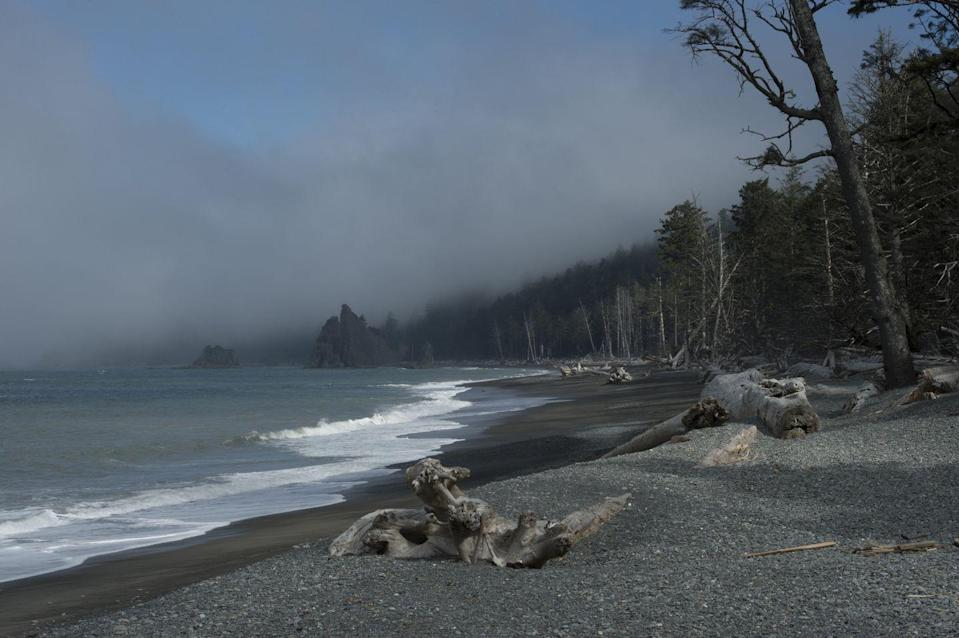 <p>Fog rolls over Rialto Beach on the coast of the Olympic Peninsula in the Olympic National Park in Washington // January 1, 2013</p>