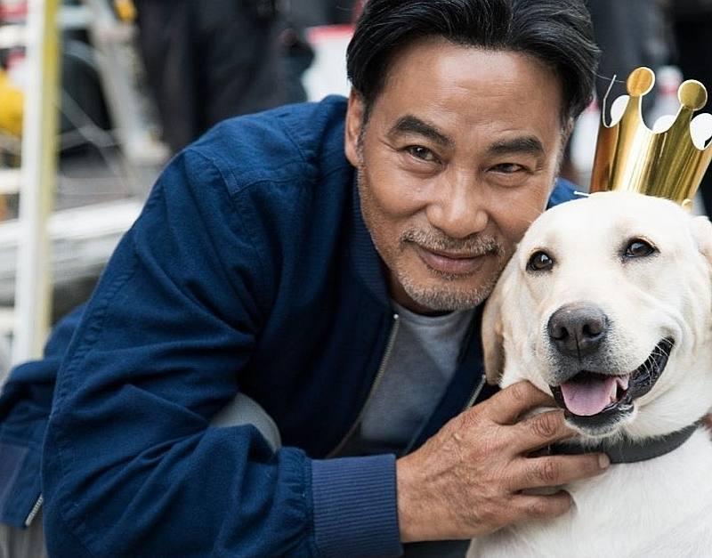 Two days after he was stabbed by a schizophrenia man, Hong Kong actor Simon Yam is recuperating from a second operation July 21, 2019. — Picture courtesy of Instagram/ simonyamofficial