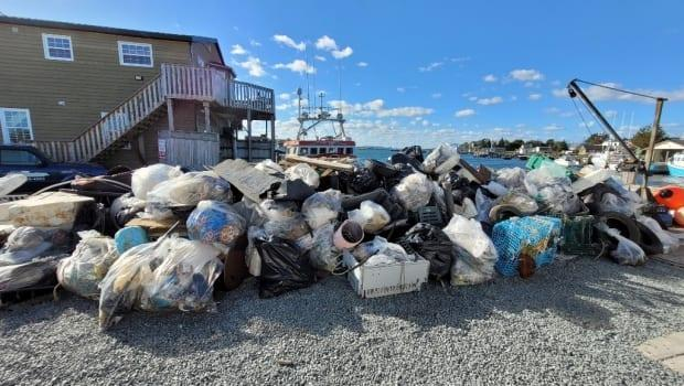 About 80 bags of trash were collected during the 30th annual clean up of McNabs Island on Sunday. (Friends of McNabs/Twitter - image credit)
