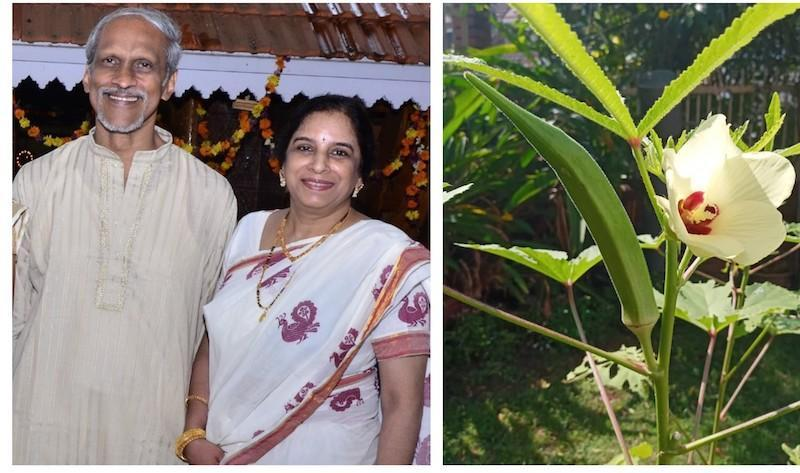 Beena and Sivalal will be presenting vegetable seedlings to their grandchildren for this year's Vishu celebration. — Picture courtesy of Sivalal Sadasivan
