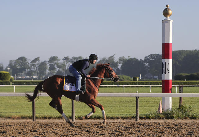 Belmont Stakes hopeful Hofburg gallops around the track during a workout at Belmont Park, Tuesday, June 5, 2018, in Elmont, N.Y. Hofburg drew the No. 4 post position, and has the second best odds behind Justify, who drew the rail. (AP Photo/Julie Jacobson)