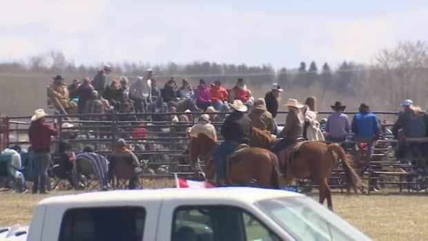 Hundreds attended a rodeo near Bowden, Alta., over the weekend in defiance of public health restrictions, despite surging COVID-19 cases. (Justin Pennell/CBC - image credit)