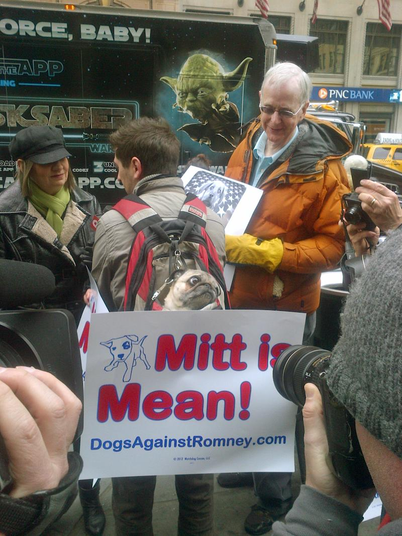 Sake, a pug, center, is carried in a backpack by his owner Tate Hausman of Brooklyn during a protest aimed at Republican presidential candidate Mitt Romney in New York, Tuesday Feb. 14, 2012.  The demonstration took place outside of  Madison Square Garden, where the Westminster dog show is taking place. The demonstration was organized by the Dogs Against Romney webstite. (AP Photo/Ginger Tidwell)