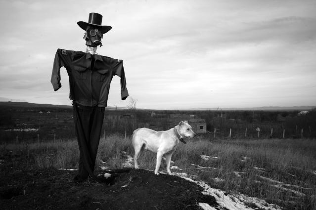 "<p>""Hidden Scars"": Bamut, Chechnia, 2013. A scarecrow and his guard dog watch over the village of Bamut, which was always a rebel stronghold, and was the last village to fall to Russian forces. The entire village was leveled by the Russian military. Bamut is near the Chechen border with neighboring Ingushetia, which lies to the west of Chechnya. In April 2014, Chechen President Ramzan Kadyrov sent forces on a cross-border raid into Ingushetia. A few years previously, he sent forces on a similar raid into Dagestan, to the east. Kadyrov's Pan-Caucasus ambitions are making his neighbors uneasy. (© Stanley Greene/Noor Images from ""War Is Only Half the Story,"" the Aftermath Project & Dewi Lewis Publishing) </p>"