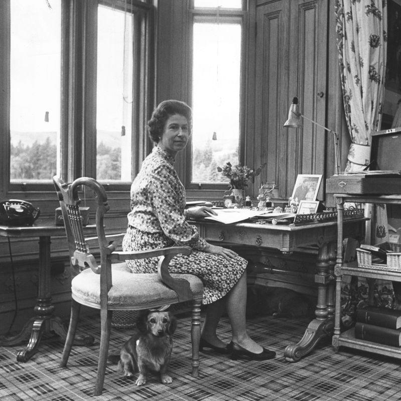 <p>Indeed, in nearly every photo of the Queen at home, there's a dog (or two!) at her feet. She never went far without her loyal pooches.</p>