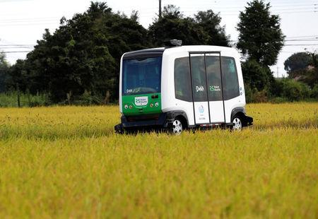 Robot Shuttle, a driver-less, self driving bus, drives past between rice stalk during an experimental trial with self-driving bus in a community in Nishikata town