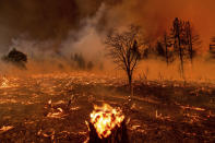 Smoke envelops trees as the Sugar Fire, part of the Beckwourth Complex Fire, burns in Doyle, Calif., on Friday, July 9, 2021. (AP Photo/Noah Berger)