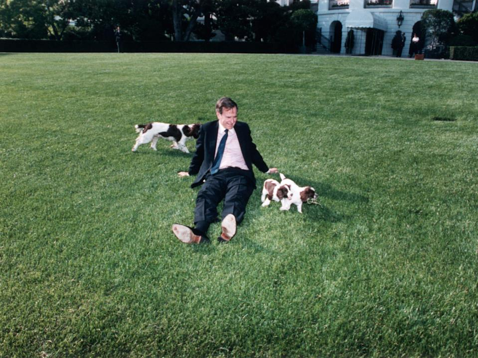 george bush with dogs