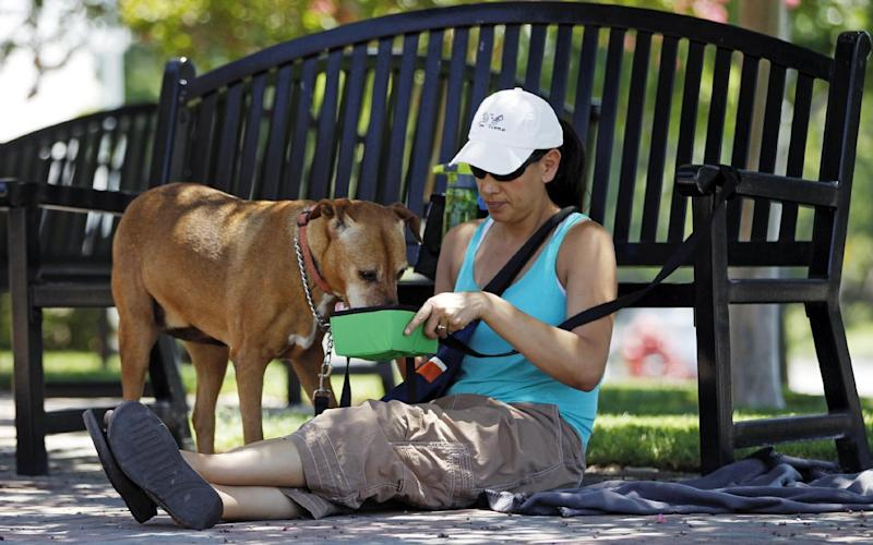"""In this photo taken Friday, June 28, 2013, Monee Hauducoeur, from Upland, Calif., keeps a bowl of fresh water for her dog, """"Summer,"""" as she awaits in the shade to adopt another dog outside the City of Rancho Cucamonga Animal Care & Adoption Center in Rancho Cucamonga, Calif. The western U.S. is bracing for a record heat wave this weekend. A strong upper-level ridge of high pressure developing over Southern California will generate torrid temperatures starting Friday, raising fears of heat-related illnesses and wildfires. (AP Photo/Damian Dovarganes)"""