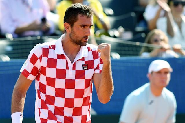 Marin Cilic earned Croatia's second point in the Davis Cup semi-final against the USA (AFP Photo/-)