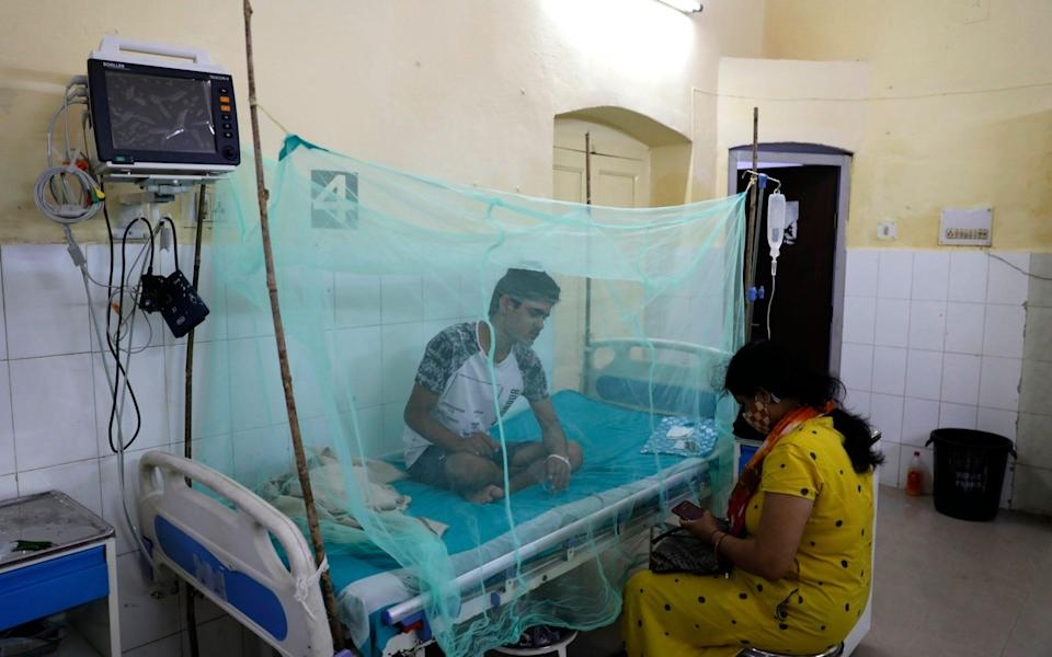 A dengue patient rests under a mosquito net at the dedicated ward of a government hospital in Prayagraj, Uttar Pradesh, India - Rajesh Kumar Singh/AP