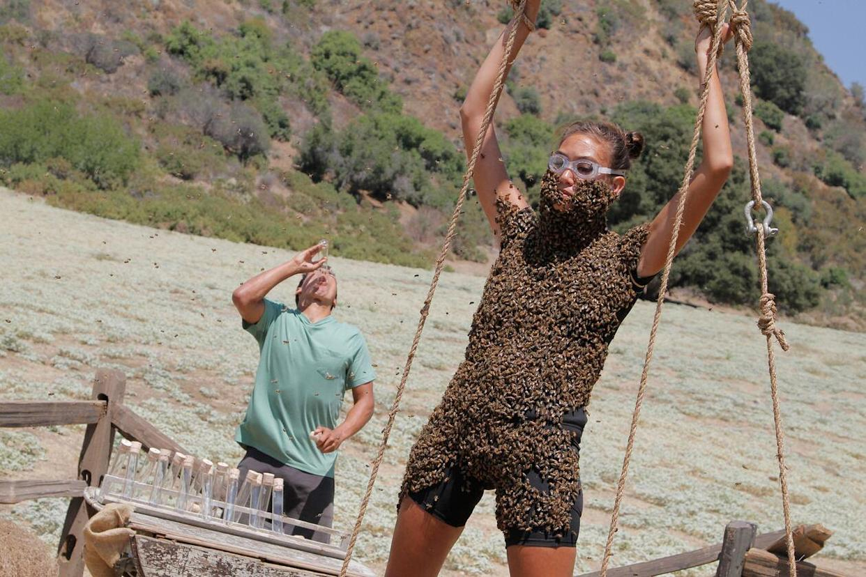 A 'Fear Factor' contestant is covered in bees in the 2011 revival (Photo: NBC)