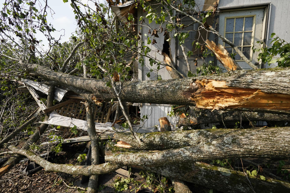 Tree limbs driven by the winds of Sunday's tornado poke through the offices of Poore's Nursery in Yazoo County, Miss., Monday, May 3, 2021. The building and the owners' home were heavily damaged from the fallen trees, some that had yet to be removed by Monday afternoon. (AP Photo/Rogelio V. Solis)