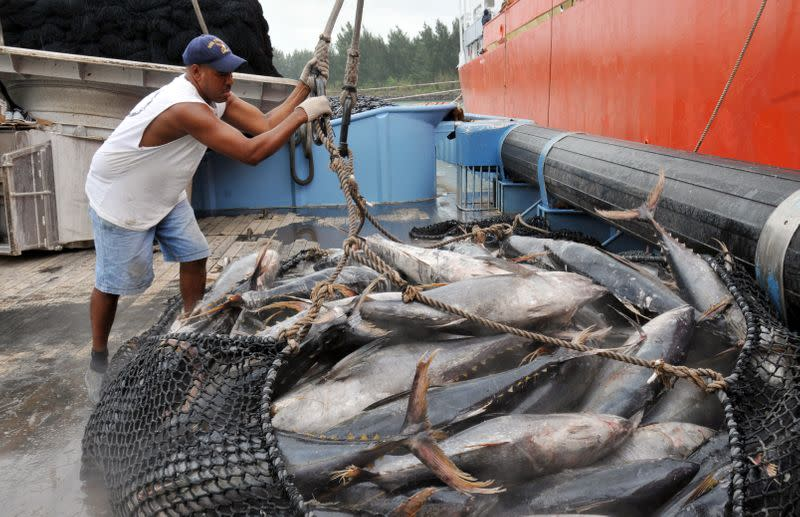 FILE PHOTO: Talks start to protect Indian Ocean's depleting tuna