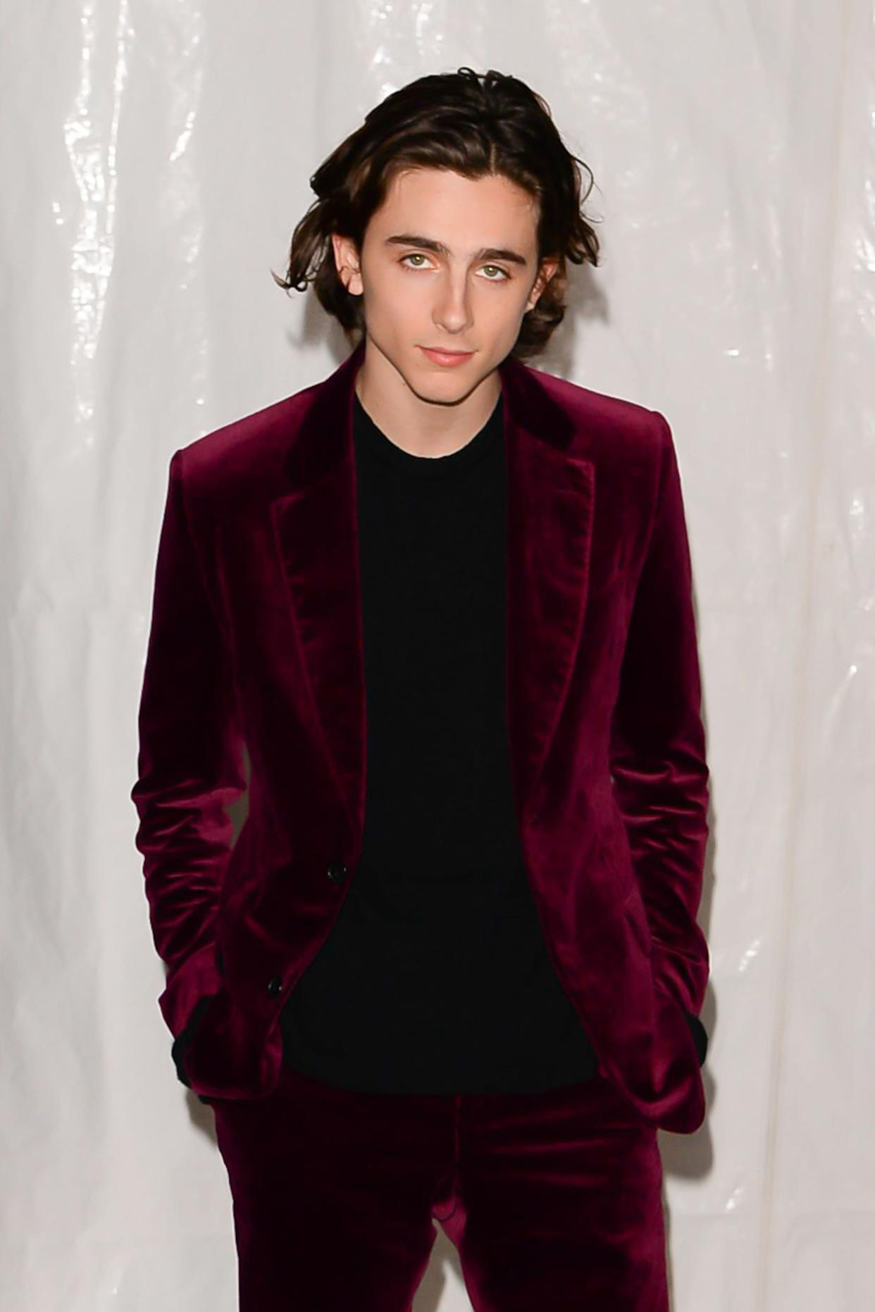 NEW YORK, NY - NOVEMBER 27: Actor Timothee Chalamet is seen Downtown on November 27, 2017 in New York City. (Photo by Raymond Hall/GC Images)