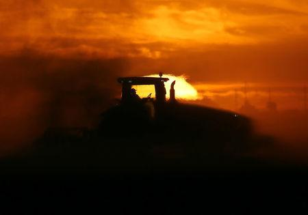 A man drives a tractor plowing a field at sunrise near Calexico, California, United States, October 8, 2016. REUTERS/Mike Blake