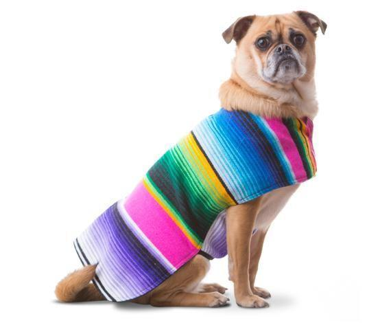 "<p>Hand-sewn from hand-woven serape blankets straight from Guadalajara, Mexico with proceeds donated to Baja California Spay Neuter Foundation. The face says no, but the heart says, <em>sí</em>!</p> <br> <br> <strong>Baja Ponchos</strong> Authentic Mexican Blanket Dog Poncho, $19.99, available at <a href=""https://www.etsy.com/listing/266709523/"" rel=""nofollow noopener"" target=""_blank"" data-ylk=""slk:Etsy"" class=""link rapid-noclick-resp"">Etsy</a>"
