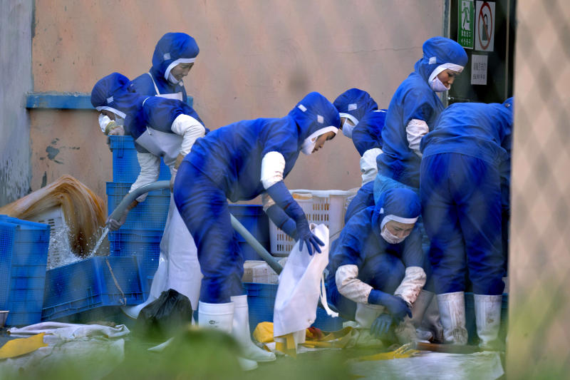 In this Sept. 4, 2017, photo, workers at a seafood processing plant where North Korean workers are distinguished from the Chinese workers by blue overalls wash up after work in the city of Hunchun, in northeastern China's Jilin province. At a time when North Korea faces sanctions on many exports, it sends of tens of thousands of workers worldwide bringing in revenue estimated at anywhere from $200 million to $500 million. That could account for a sizable portion of its nuclear weapons and missile programs, which South Korea says has cost well over $1 billion. (AP Photo/Ng Han Guan)