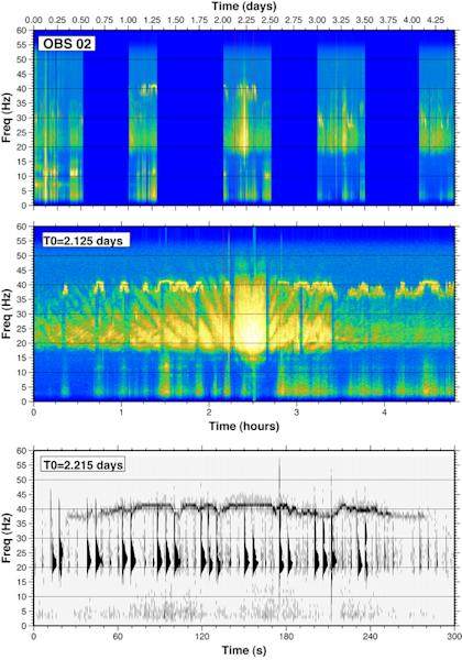 Whale calls recorded during a seismic survey in the Gulf of California. <p>Top: This spectrogram of ocean sound was recorded by a hydrophone during an air gun seismic experiment in the Gulf of California in 2002. Color indicates the loudness of