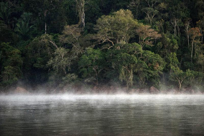 A court in Brazil last week blocked a decree signed by President Temer to open up a huge area of the Amazonian rainforest to large-scale mining