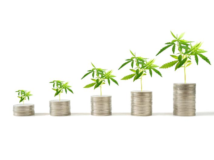 Five increasingly higher stacks of coins with cannabis plants on top of each stack