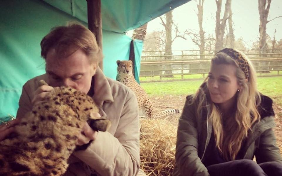 Damian Aspinall and Carrie Johnson with cheetah brothers Saba and Nairo at Howletts last year before their rewilding to South Africa - Carrie Symonds