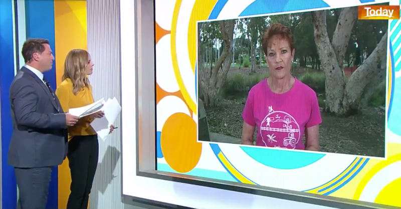 Pictured is Pauline Hanson appearing on screen in the Today Show studio with Karl and Ally.