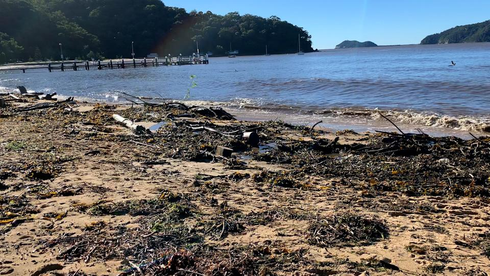 While Patonga has been impacted by flooding before, some locals have noted more plastic on the beach this year. Source: Michael Dahlstrom