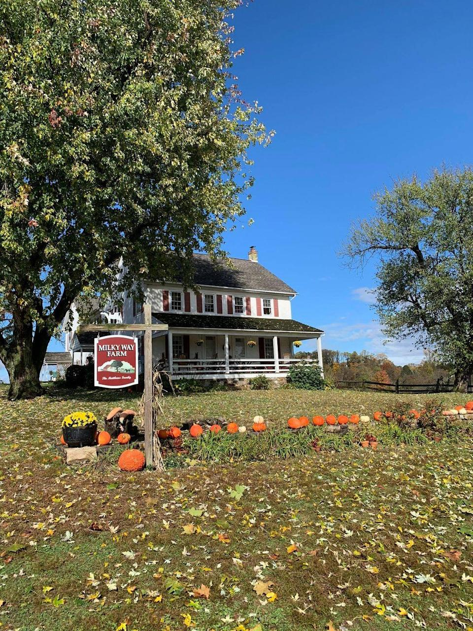 """<p><strong>Chester Springs, Pennsylvania</strong></p><p>Along with nearly 25,000 pumpkins, <strong><a href=""""http://www.milkywayfarm.com/"""" rel=""""nofollow noopener"""" target=""""_blank"""" data-ylk=""""slk:Milky Way Farm"""" class=""""link rapid-noclick-resp"""">Milky Way Farm</a> </strong>also grows corn, gourds, squash and more. Try their creamery's homemade ice cream or get some fresh air while walking through their fields. On-site hayrides are free, but you'll have to pay for the pumpkin you pick off the vine.</p><p><strong>RELATED: </strong><a href=""""https://www.goodhousekeeping.com/food-recipes/easy/g926/easy-fall-dinner-recipes/"""" rel=""""nofollow noopener"""" target=""""_blank"""" data-ylk=""""slk:60 Tasty, Easy Fall Dinner Recipes for Busy Weeknights"""" class=""""link rapid-noclick-resp"""">60 Tasty, Easy Fall Dinner Recipes for Busy Weeknights</a> </p>"""