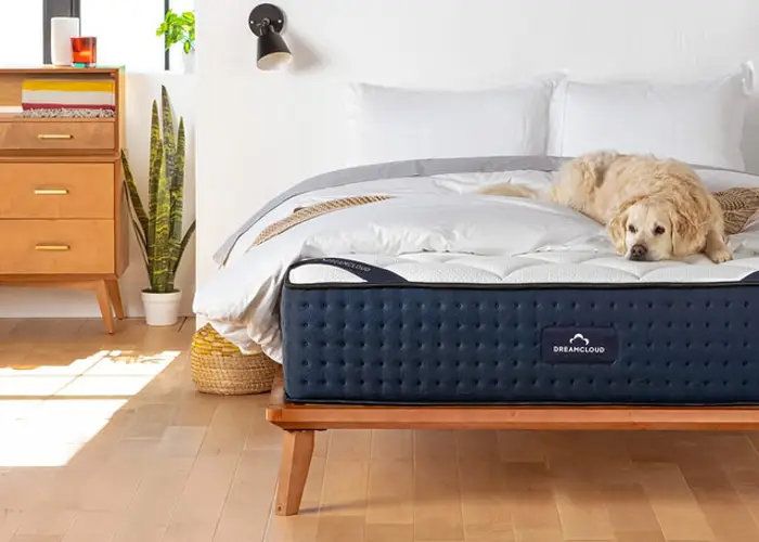 """<h3>DreamCloud</h3><br><strong>Sale:</strong> Enjoy $200 off mattresses, plus free mattress protector, sheet set, and premium pillows with purchase<br><strong>Dates:</strong> Now - September 6<br><strong>Promo Code:</strong> None<br><br><em>Shop <strong><a href=""""https://www.dreamcloudsleep.com/"""" rel=""""nofollow noopener"""" target=""""_blank"""" data-ylk=""""slk:DreamCloud"""" class=""""link rapid-noclick-resp"""">DreamCloud</a></strong></em><br><br><strong>DreamCloud</strong> Luxury Hybrid Mattress, $, available at <a href=""""https://go.skimresources.com/?id=30283X879131&url=https%3A%2F%2Fwww.dreamcloudsleep.com%2Fmattress"""" rel=""""nofollow noopener"""" target=""""_blank"""" data-ylk=""""slk:DreamCloud"""" class=""""link rapid-noclick-resp"""">DreamCloud</a>"""