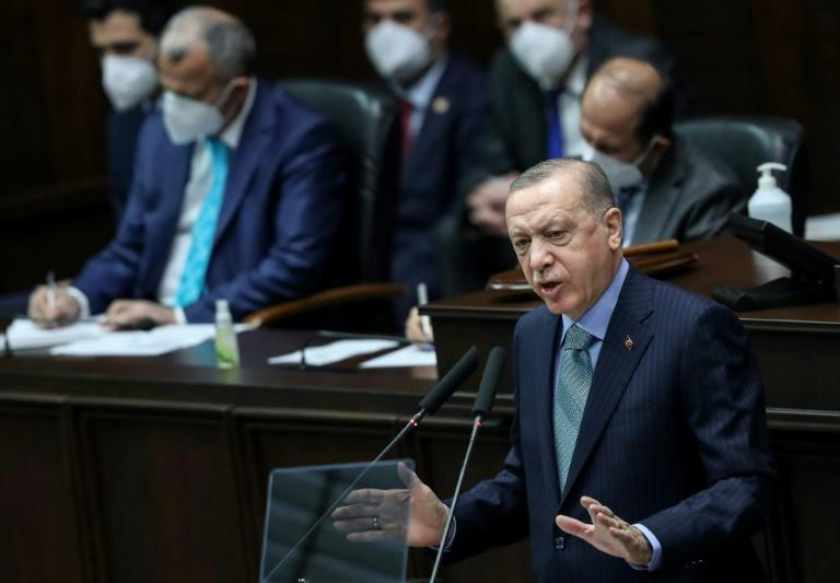 Erdogan has been rattled by a burst of student protests that hint at Turks' impatience with his commanding rule as prime minister and president since 2003