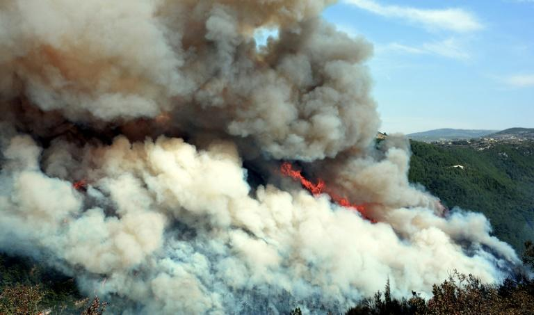 Forest fires have erupted in large swathes of land in Lebanon and Syria (AFP Photo/-)