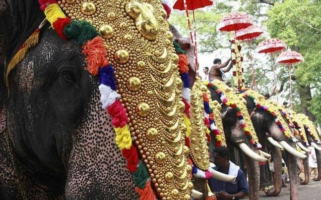 Kerala: Government gives go-ahead for much-awaited fireworks in Thrissur Pooram Festival