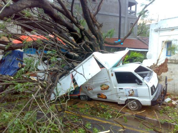 Vehicles damaged by trees felled by the wrath of Cyclone Thane in Puducherry. Photo by Yahoo! reader Anurag Jain
