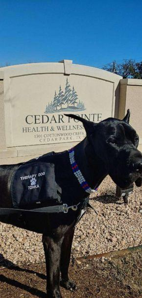PHOTO: Tonka the Great Dane regularly brought joy to the residents at Cedar Pointe Health & Wellness Suites. (Courtesy Courtney Leigh)