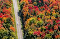 """<p><a href=""""https://www.countryliving.com/life/travel/g4004/best-small-towns-canada/"""" rel=""""nofollow noopener"""" target=""""_blank"""" data-ylk=""""slk:Canada's"""" class=""""link rapid-noclick-resp"""">Canada's</a> lush forests provide gorgeous views for long drives across the country. </p>"""