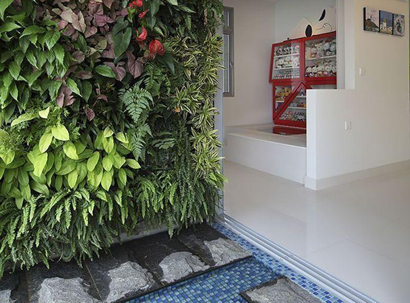 The Concept Of Vertical Gardening Has Become A Growing Trend In Recent  Years Because It Offers Greening Solutions For Homes Where Space Is A  Challenge.