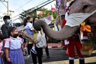 The school visit is an annual tradition for the elephants