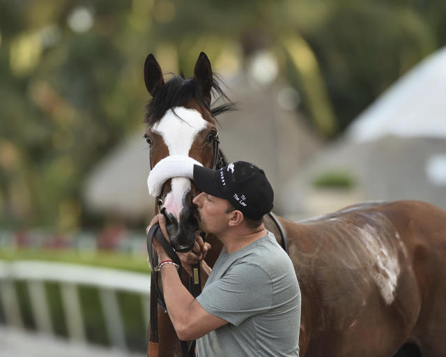 In this March 28, 2020, photo provided by Gulfstream Park, Tiz the Law gets a kiss from barn foreman Juan Saldana at Gulfstream Park in Hallandale Beach, Fla. Tiz the Law was made the early 6-5 favorite for the Belmont Stakes this weekend. (Ryan Thompson/Coglianese Photos, Gulfstream Park via AP)