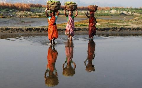 Farmers carry baskets filled with cucumbers through the waters of river Ganges at Phaphamau - Credit: Reuters